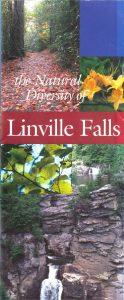 Natural Diversity of Linville Falls